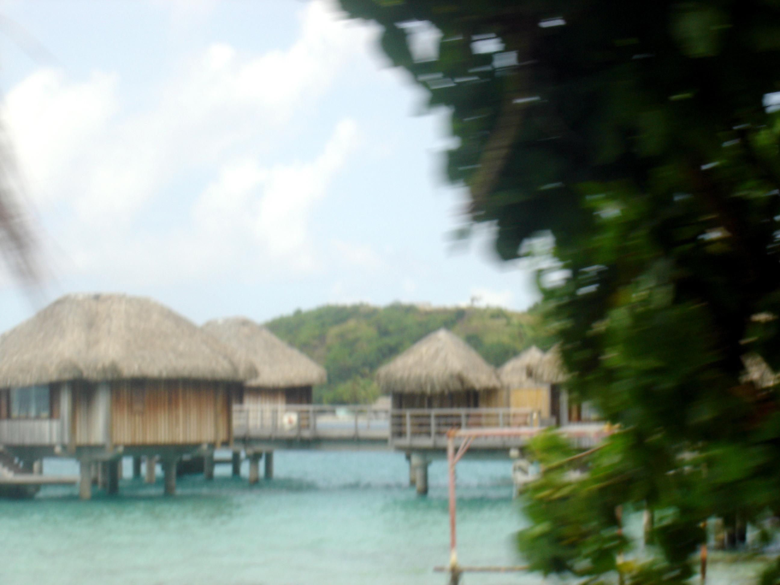 Tahiti Gallery