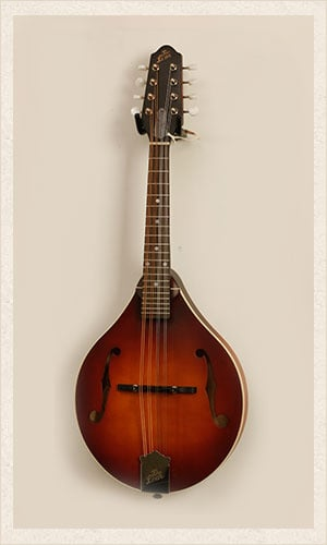 The Loar Guitar