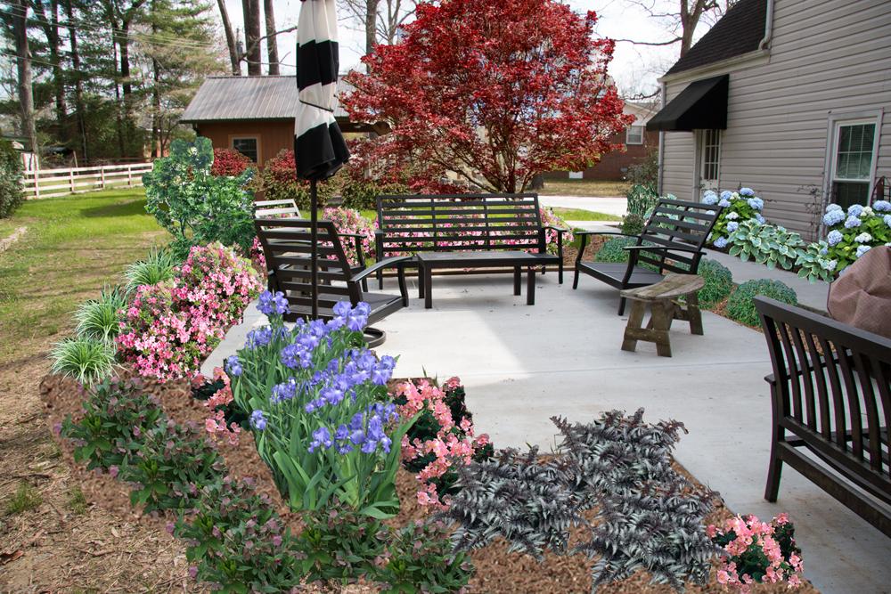 Proposed Home Landscape