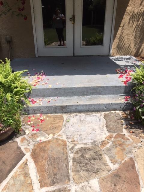 Doorway With Flower Petals