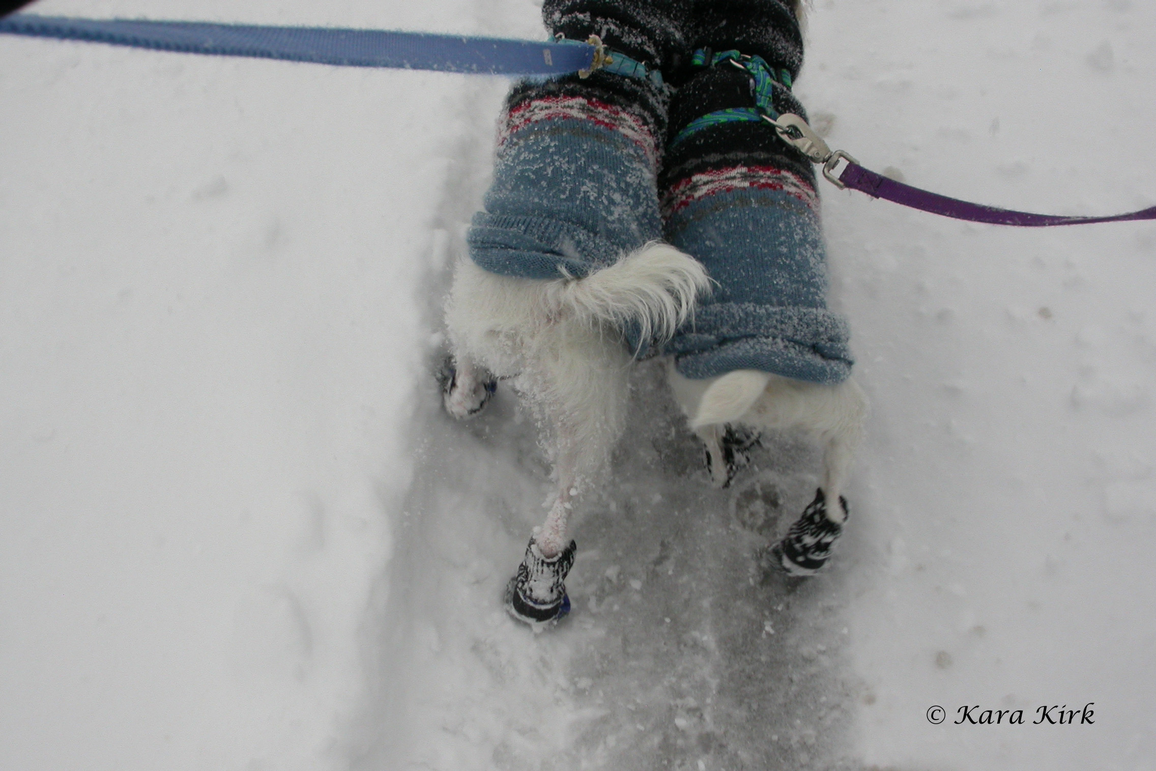 https://0201.nccdn.net/1_2/000/000/18e/80b/03-08-08-Snow-Storm-Cincinnati--OH-17-Keahi---Candice-4x6-2272x1515.jpg