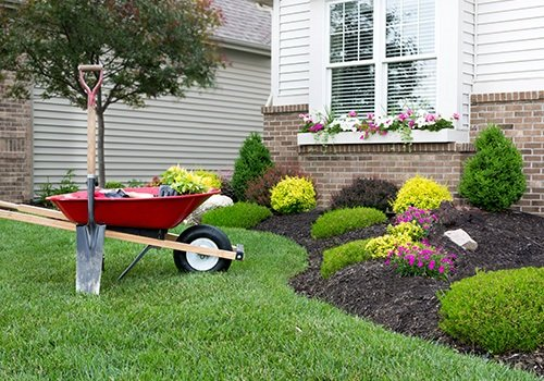Lawn Care and Maintenance Service – Austin, TX