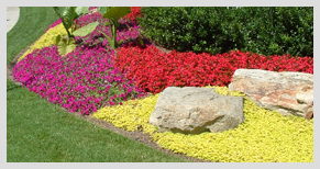 A floral landscape designed by Stoeckig Landscape Group found at a Roswell, Georgia home