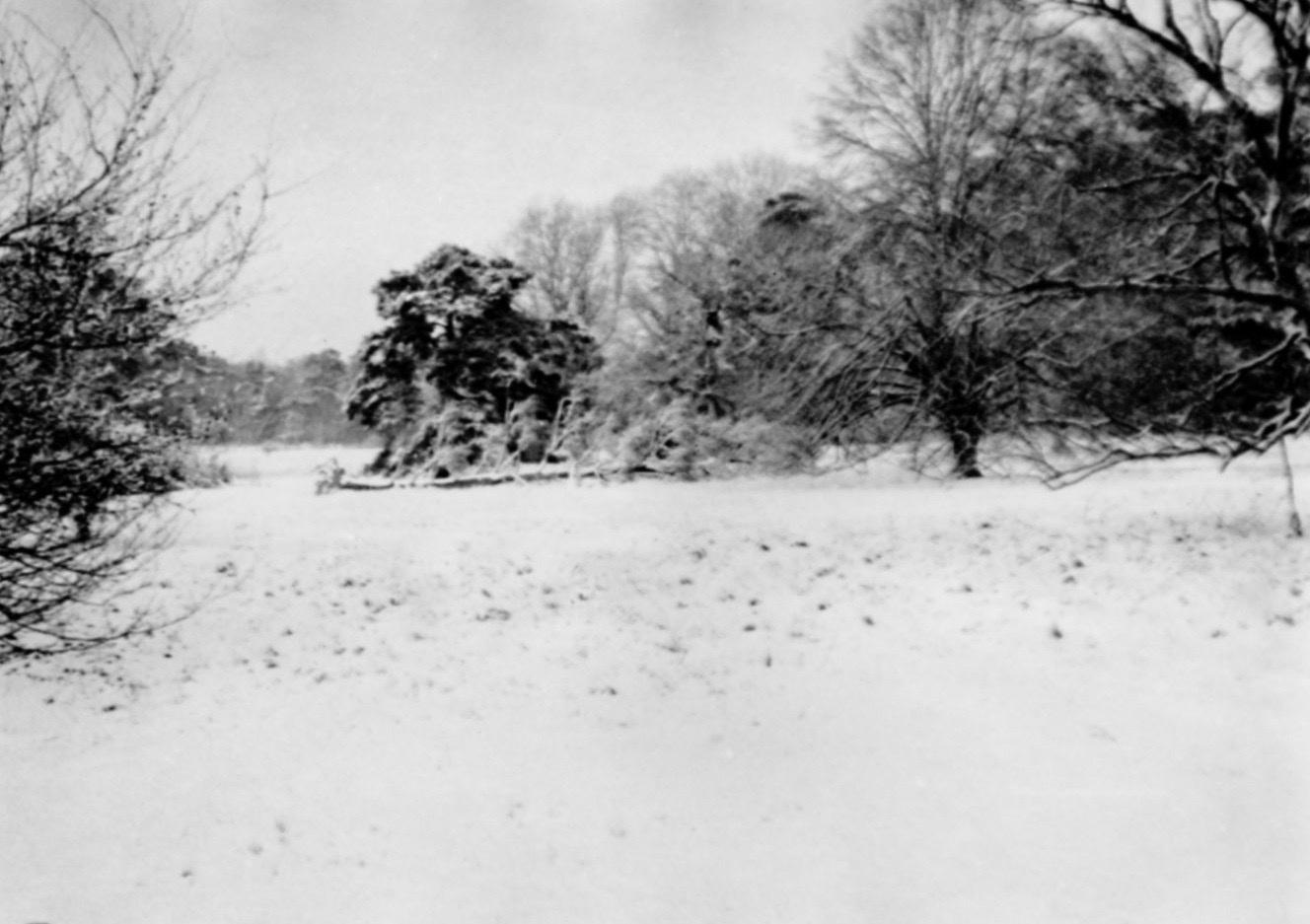 Snow in Cavenham Park January 1945