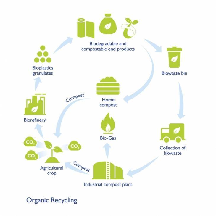 Proceso de una bolsas compostable