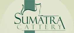 Sumatra Cattery in Maquoketa, IA is a small, in home cattery.