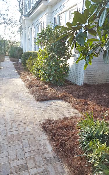 Shade Tree Landscaping