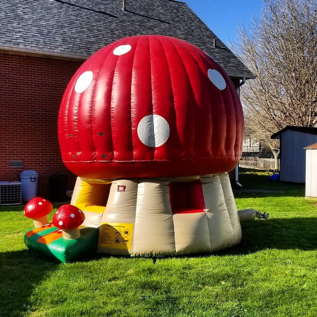 Mushroom Bounce $125 For Kids 5 and Under