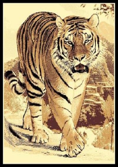 Tiger-2  5x7