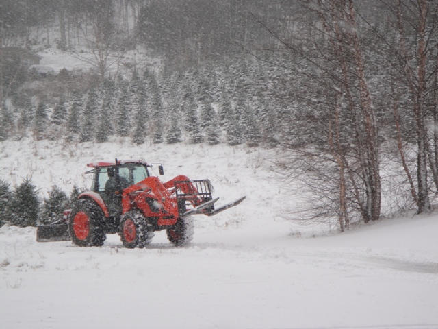 Plowing some of the snow off our drive.