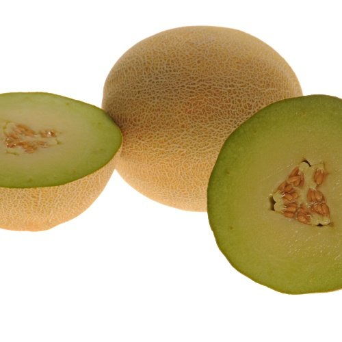 Melon Diplomat