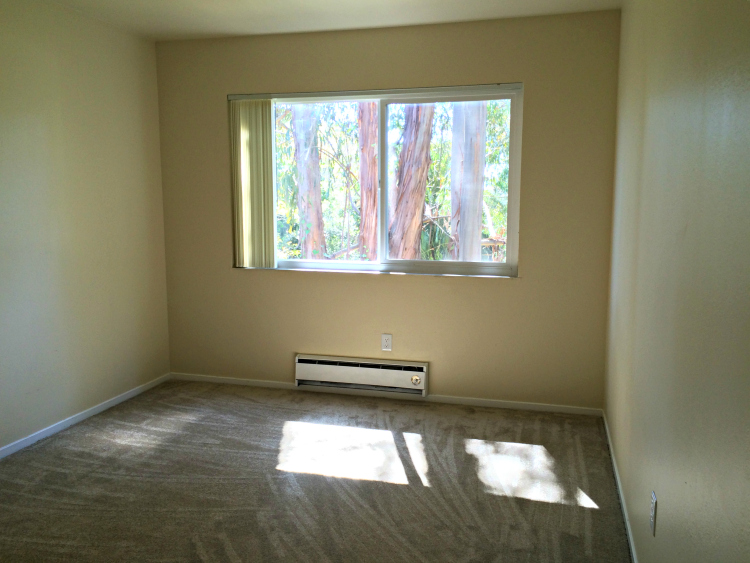 Second bedroom also receives natural light