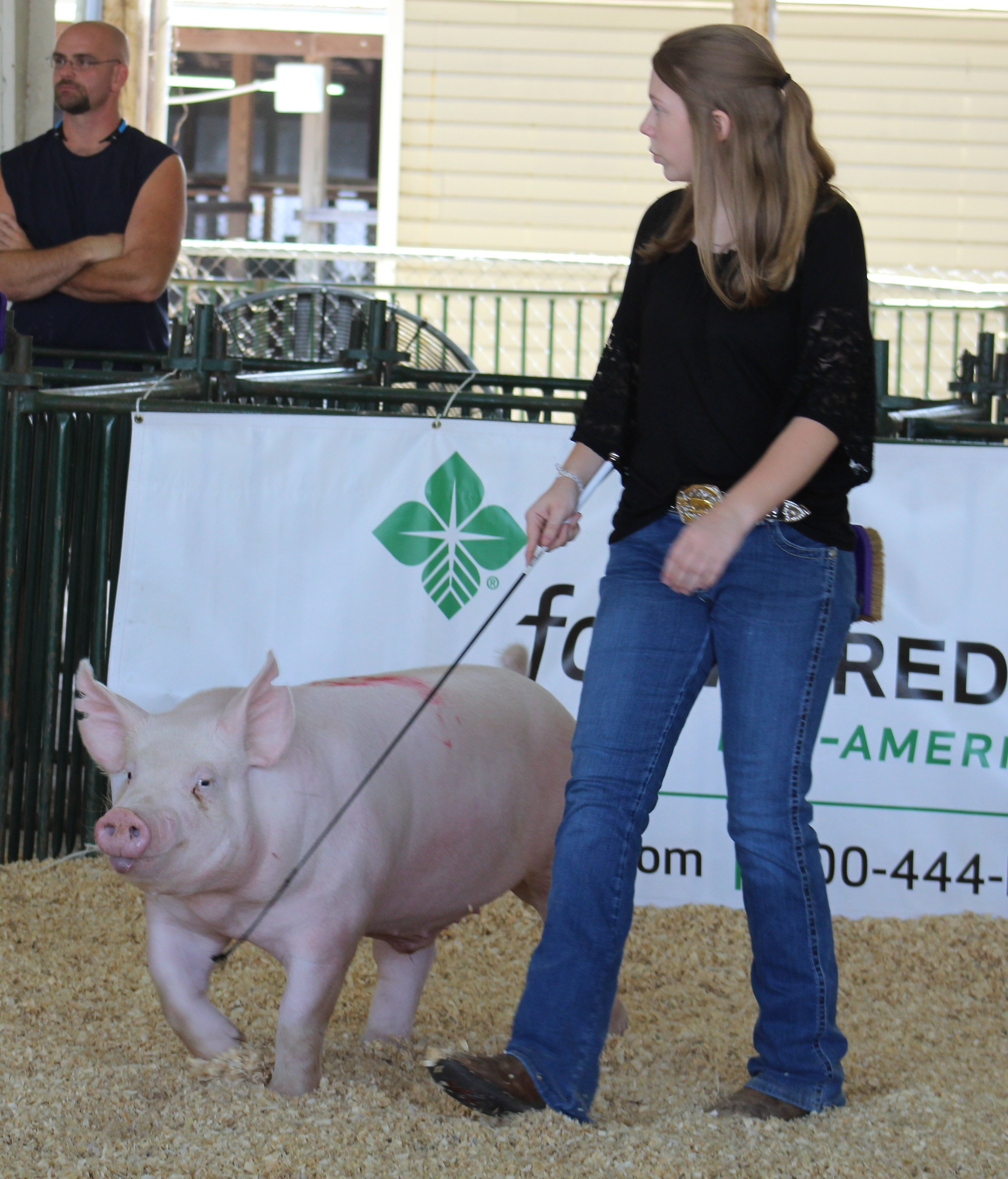 Kennedy Hill 2016 Tennessee State Fair Reserve Champion York Barrow