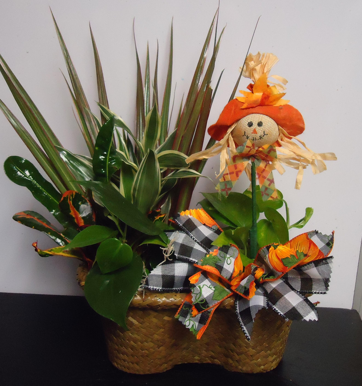 """(20)  """"Sm."""" Double Plant Basket $27.50"""