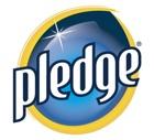 https://0201.nccdn.net/1_2/000/000/198/b9e/pledge-140x127.jpg