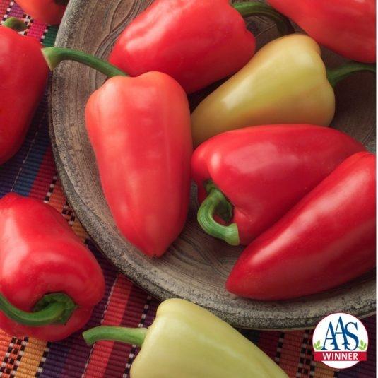 Pepper Mariachi