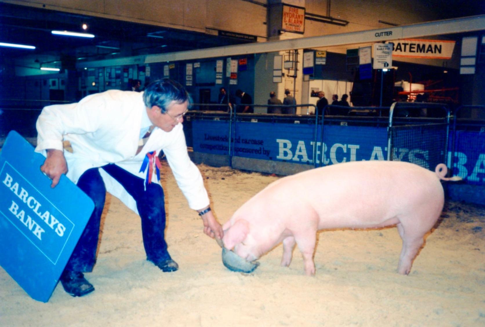 Reg Simpkin with Champion Landrace Pig at Royal Smithfield Show Earls Court circa 1985