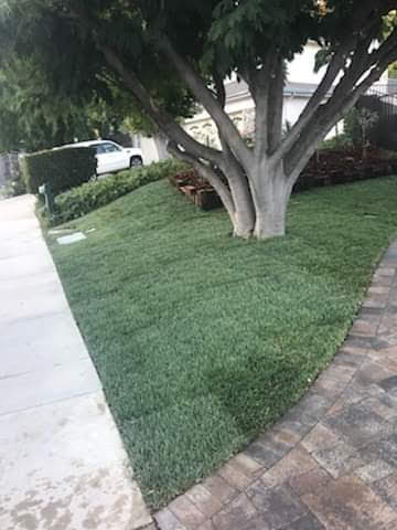 Landscaping Services 4