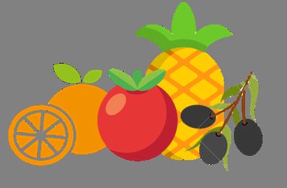 División frutas y vegetales