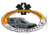 https://0201.nccdn.net/4_2/000/000/002/6cd/ambulancias-salud-condor.jpg