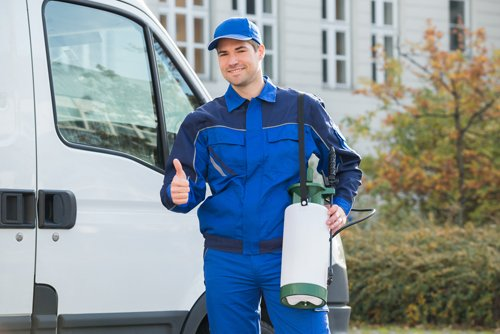 Pest Control Worker Showing Thumbsup by Truck