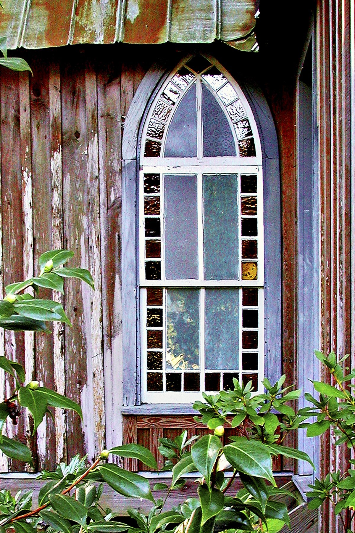 CHAPEL WINDOW - This window is in a parsonage building at a little church in a small coastal fishing town in South Carolina. I remember there were really a lot of dogs in that town.