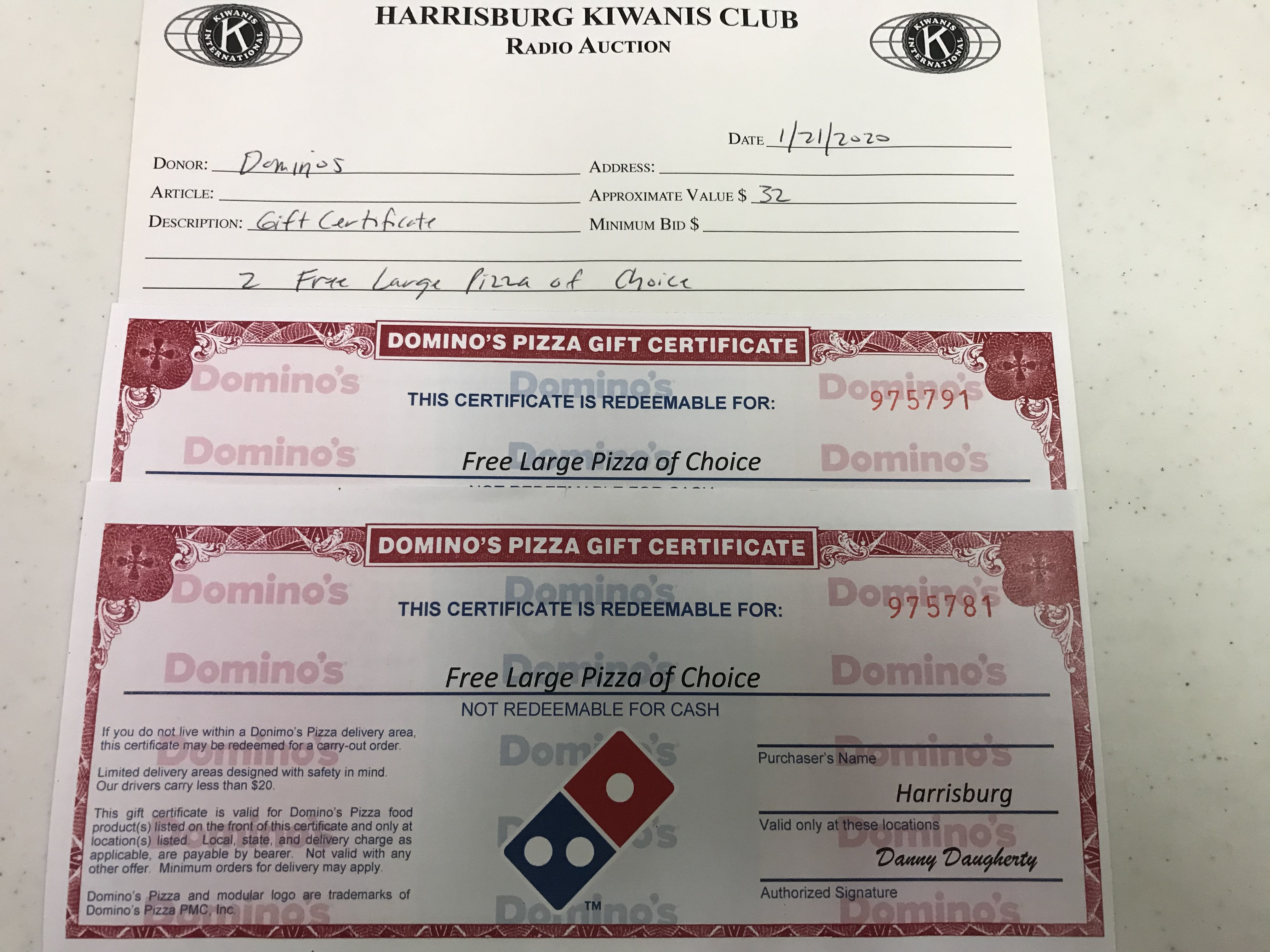 Item 230 - Dominos 2 Free Large Pizza of Choice