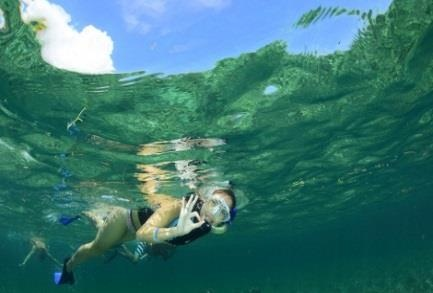 https://0201.nccdn.net/4_2/000/000/008/486/Snorkel-Adventure-3-433x293.jpg