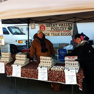 Eggs Sold at the Farmers Market