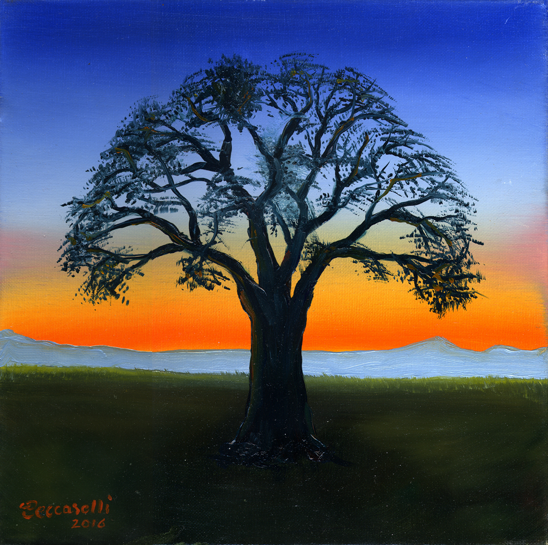 https://0201.nccdn.net/4_2/000/000/008/486/tree---sunset-72.jpg
