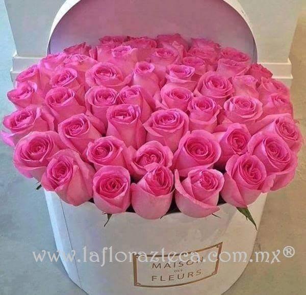 Caja 100 rosas