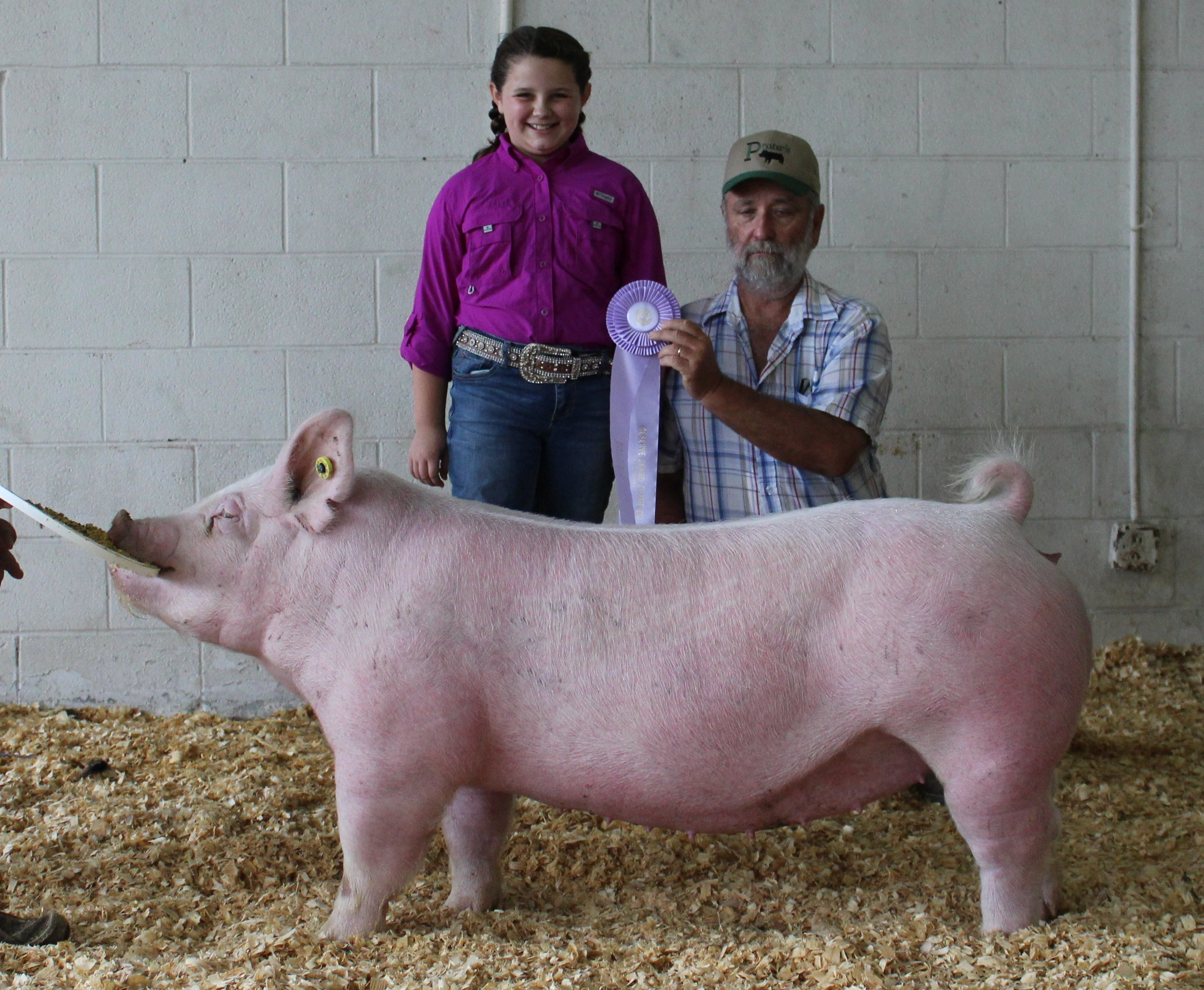 Ann Thomas Lowery 2018 Tennessee State Fair Reserve Champion Yorkshire Gilt