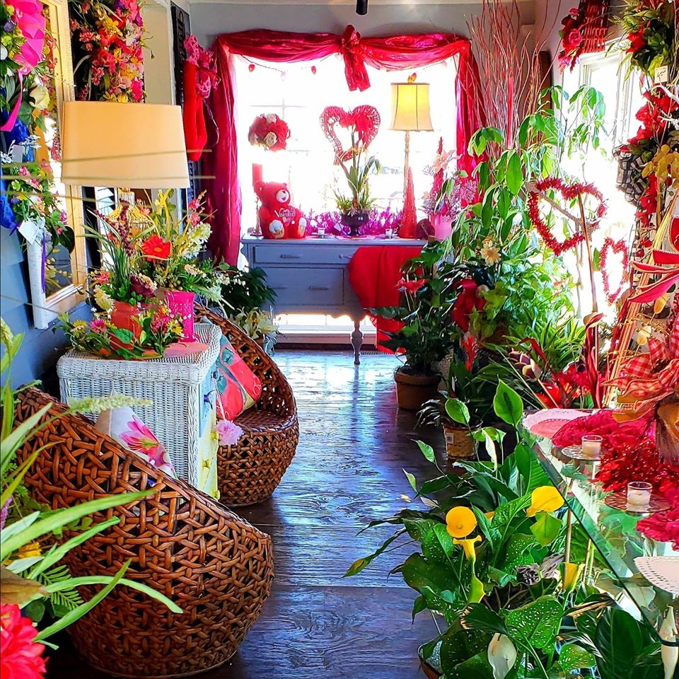 Room Full of Plants 2