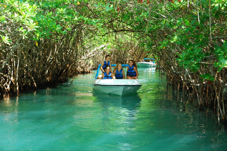 Resultado de imagen para jungle tour cancun