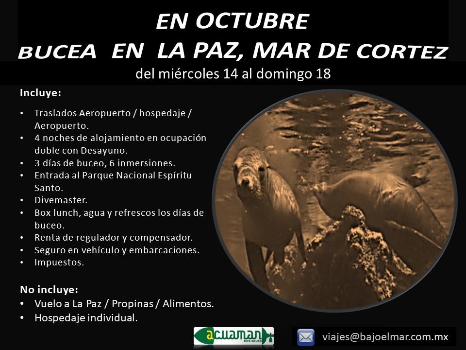 https://0201.nccdn.net/4_2/000/000/00f/745/la-paz-7---11-octubre-v2.jpg