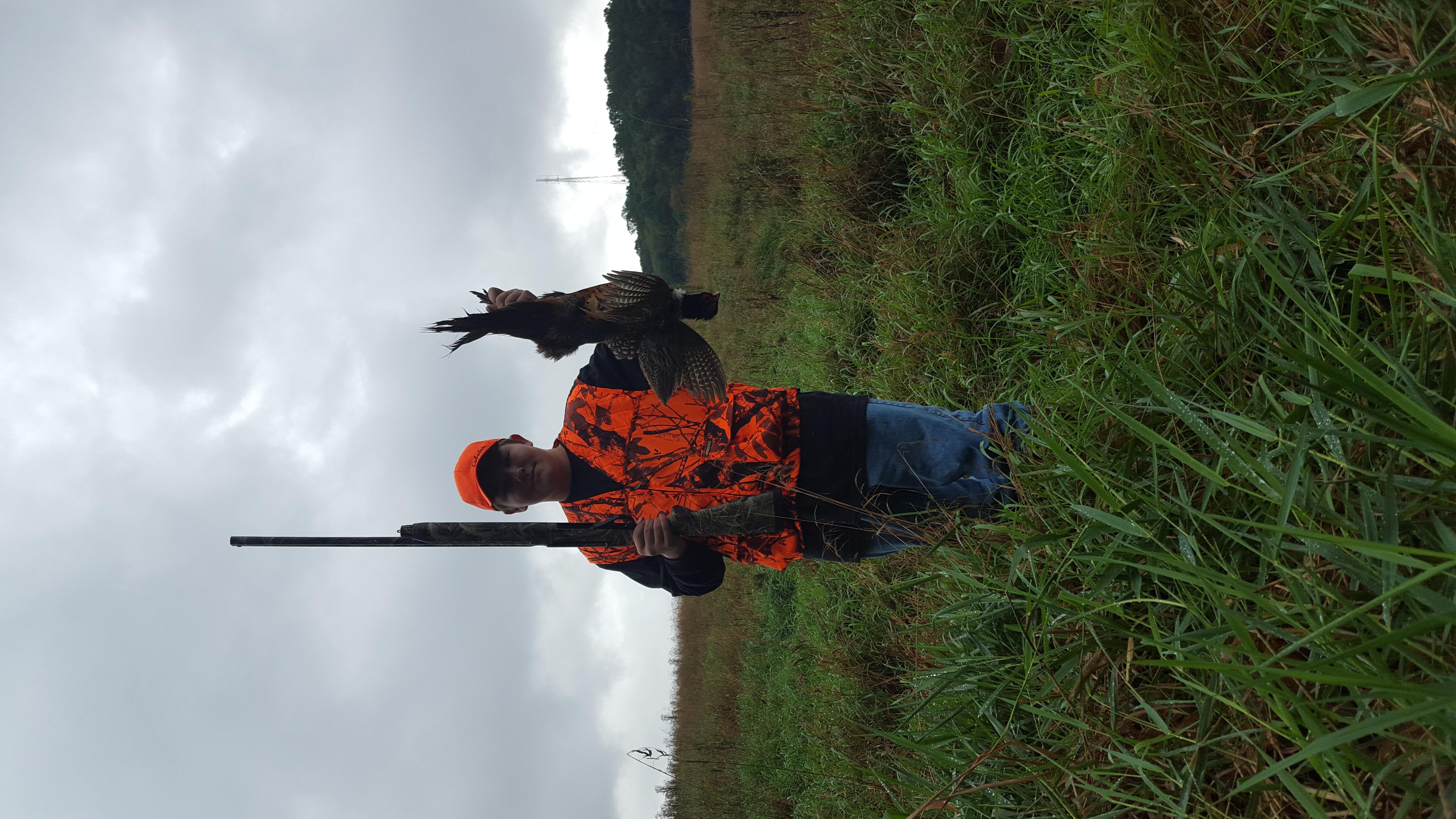 Pheasant Hunt 2018