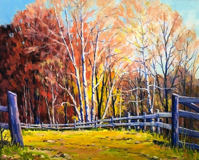 Fence Line Birches, 20x24 Oil