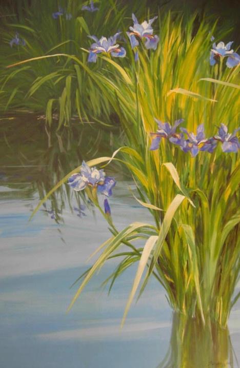 Sunlit Iris 36x24