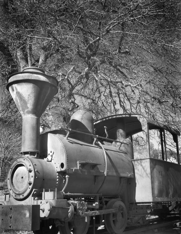 Coulterville Train