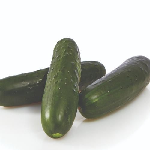 Cucumber Bristol