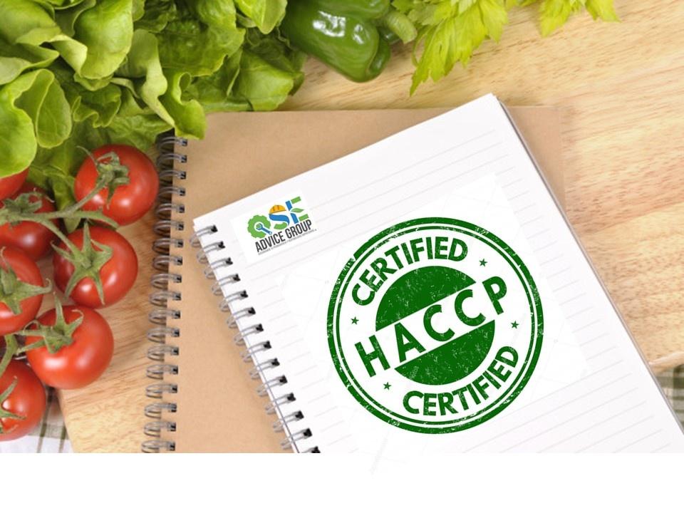 HACCP Básico Nivel I