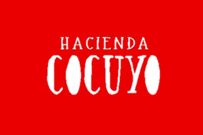 https://0201.nccdn.net/4_2/000/000/017/e75/hotel-cocuyo.png