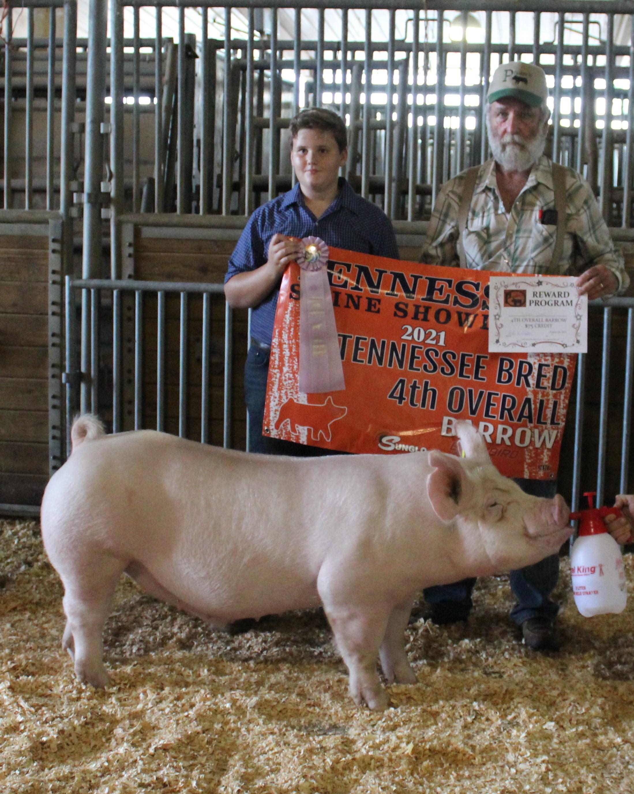 Tylan Lusk 2021 TN Swine Showdown Champion Yorkshire Barrow  (TN Kids Only) Reserve Champion Yorkshire Barrow (TN Bred) 4th Overall Barrow (TN Bred)