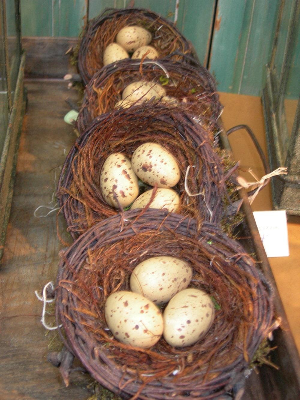 Spring 2013 Egg Nests