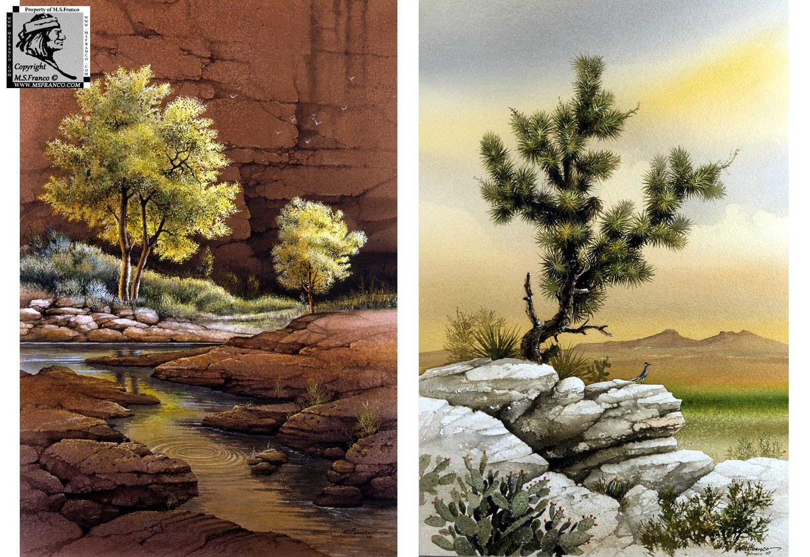 """Cottonwood Canyon"" and  ""Joshua Tree"""