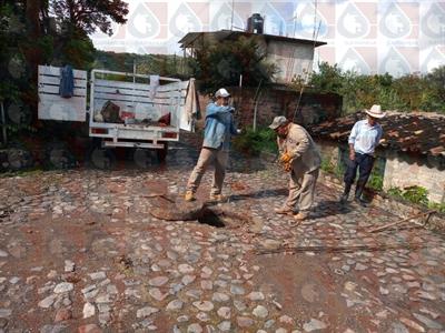 Apoyo de sondeo de drenaje en la Agencia de Santa María Ayú   Mes: Septiembre