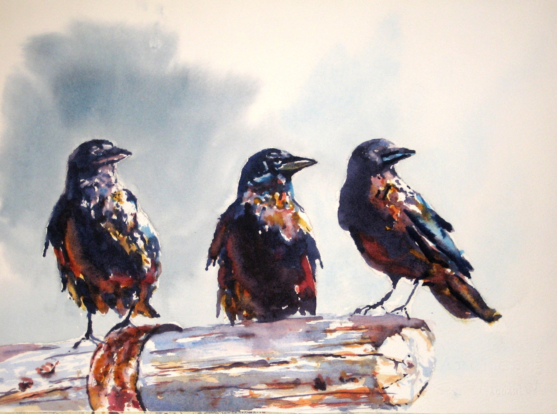Row Of Crows