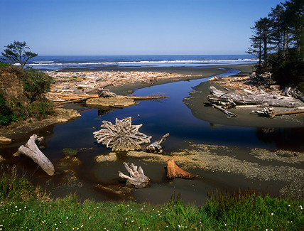 Kalaloch, Washington Coast