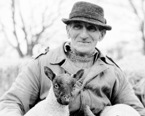 Estate Shepherd Ken Riggall