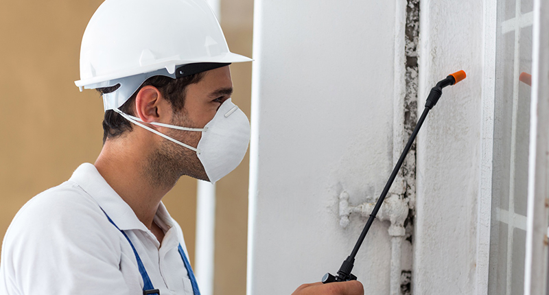 Side view of manual worker spraying pesticide